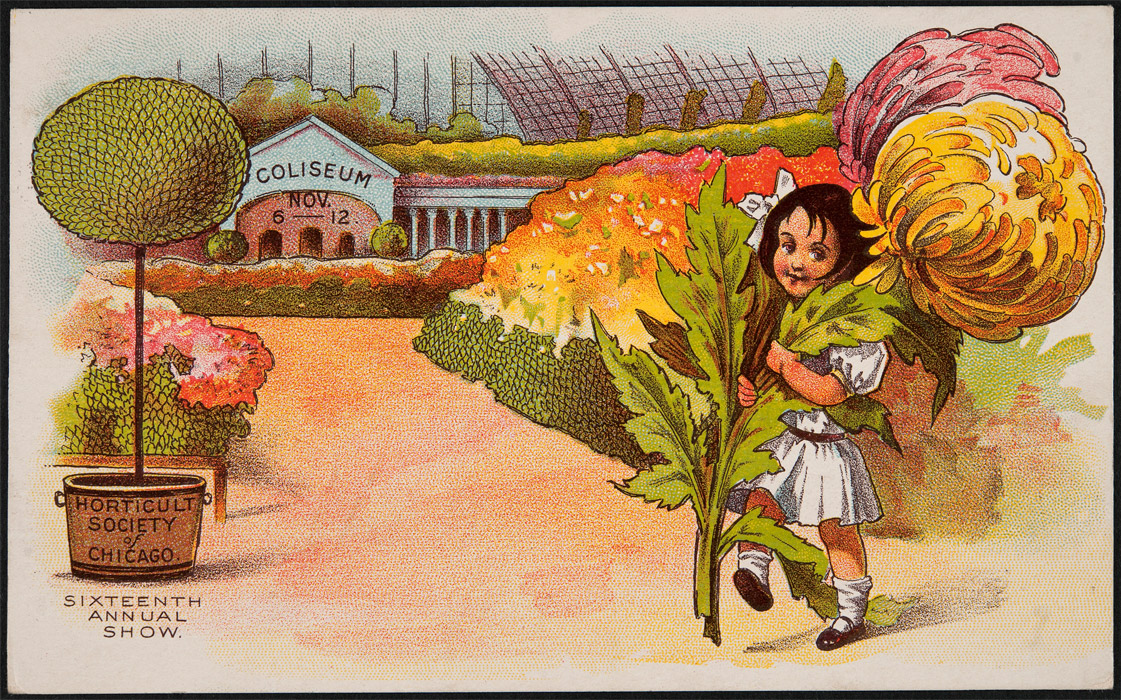 Horticultural society of chicago sixteenth annual show 1907 - Chicago flower and garden show 2017 ...